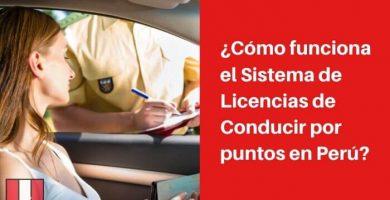 licencia de conducir por puntos