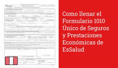 Como llenar el Formulario 1010 Único de Seguros y Prestaciones Económicas de EsSalud