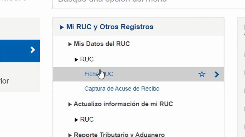 Pasos previos para descargar tu Ficha RUC (Captura de Pantalla Operaciones en Línea SOL)