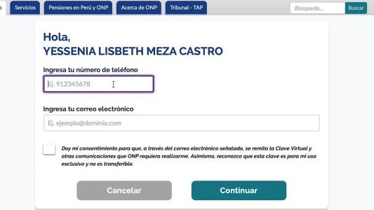 Introduce tus datos personales (Captura de Pantalla App Virtual ONP)